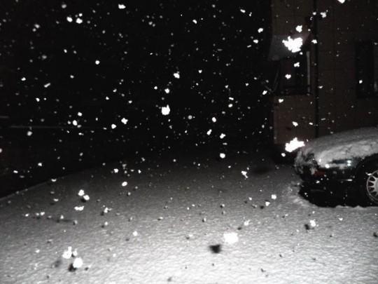 snow 2012/01/23